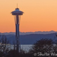 Shutter Wonders Photography Greeting Card - Space Needle at sunset