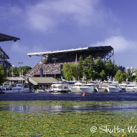 Shutter Wonders Photography Greeting Card - Husky Stadium, University of Washington