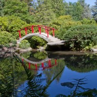 Shutter Wonders Photography Greeting Card - Kubota Garden and a traditional Japanese bridge