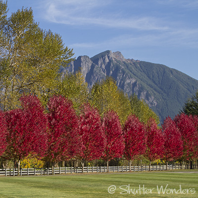 Mt. Si and autumn color
